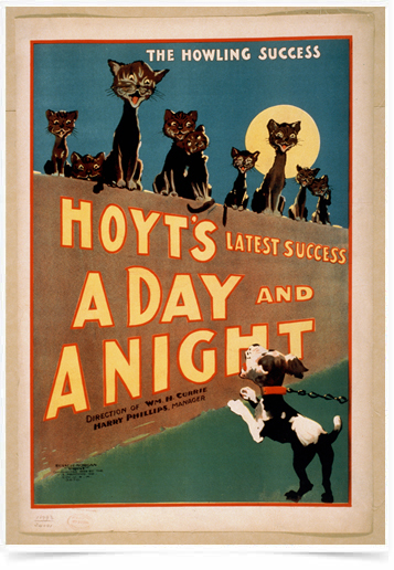 Poster Natureza Hoyts a Day And a Night
