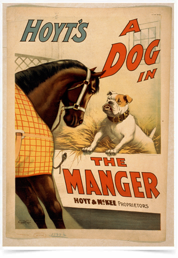 Poster Natureza Hoyts a Dog In The Manger