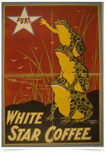 Poster Propaganda Bebidas White Star Coffee