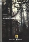 Frankenstein - Hub Young Adult Readers - Stage 4 - Book With Audio Cd