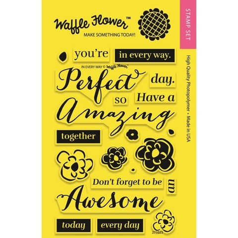 Kit de Sellos In Every Way Clear Stamp Waffle Flower - comprar online
