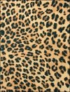 Fieltro impreso Cheetah Animal Print 30,4cm x 22,2cm