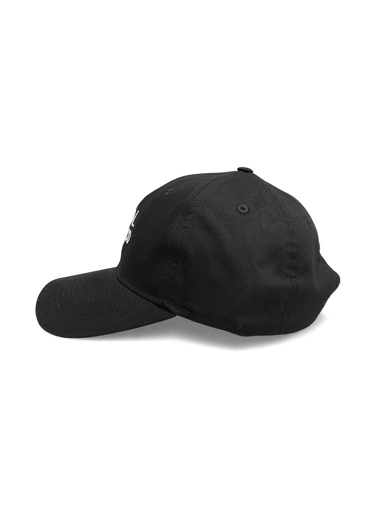 Dad Hat - Beastie na internet