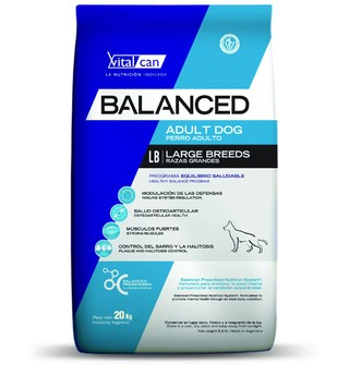 Balanced Adult Dog Large Breed