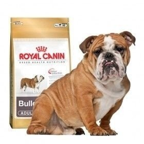 Royal Canin Bulldog Inglés 24