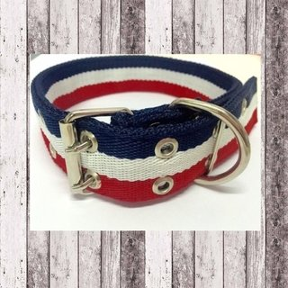 Collar Tommy