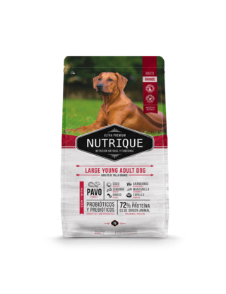 Nutrique Large Young Adult Dog