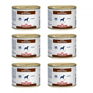 Royal Canin Gastrointestinal  Veterinary Diet