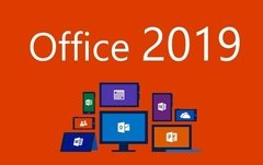 BLACK Office 2019 Professional Plus - comprar online