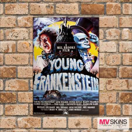 Placa Decorativa Young Frankenstein na internet