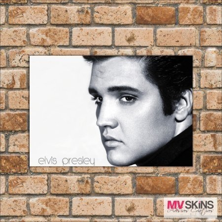 Placa Decorativa Elvis Presley 02 na internet