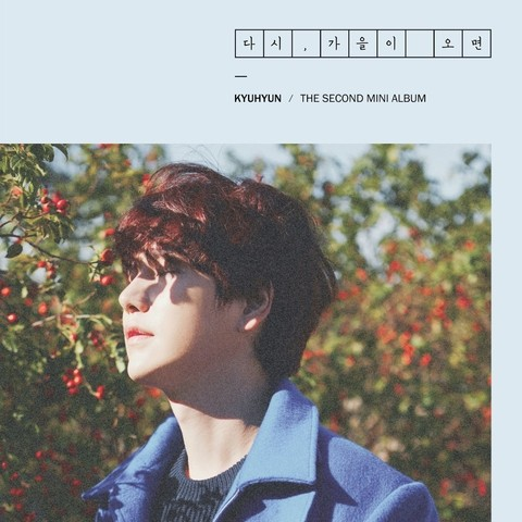 KYUHYUN - 2nd Mini Album [FALL, ONCE AGAIN]