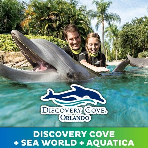 Ingresso Discovery Cove Resort Package (+ Sea World + Aquatica)