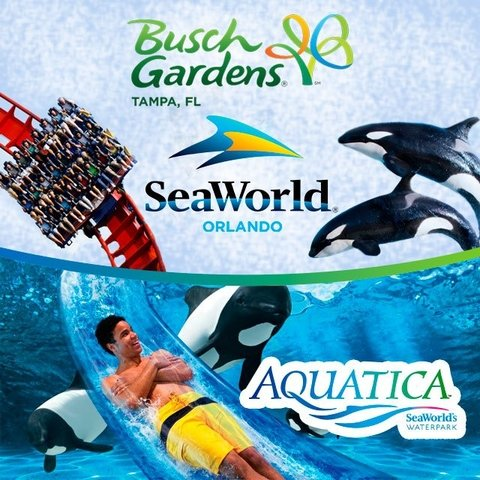 Ingresso COMBO Sea World + Aquatica + Busch Gardens