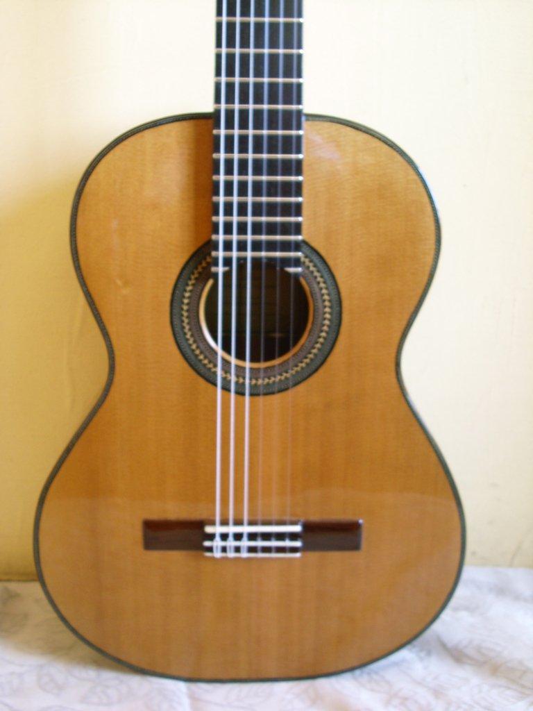 Guitarras de luthier for Guitarras de luthier