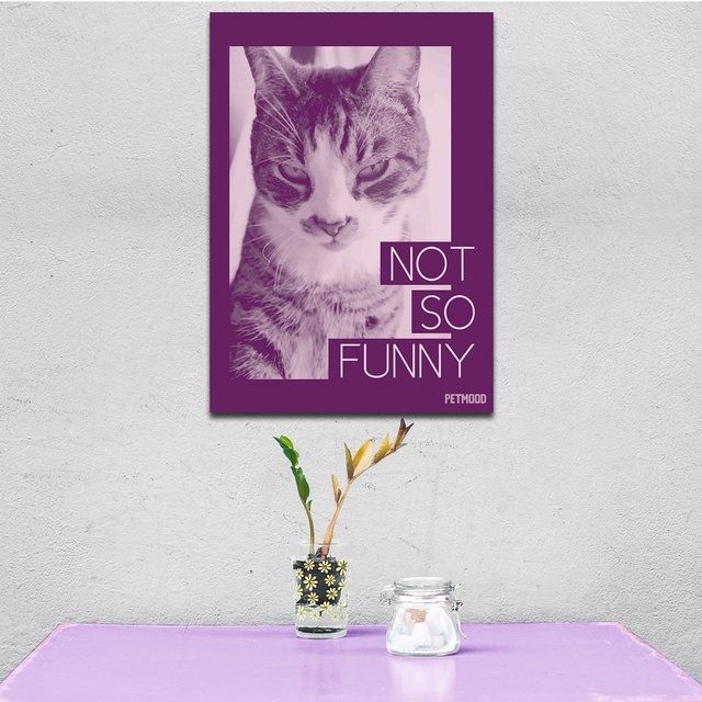 Quadro Gato Not So Funny - Outlet - comprar online