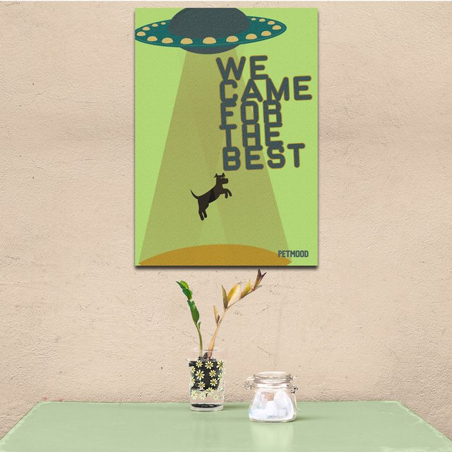Quadro We Came Dog - Outlet