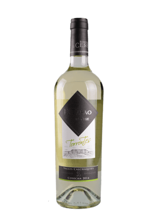 TAPAO DEL CESE TORRONTES 2014