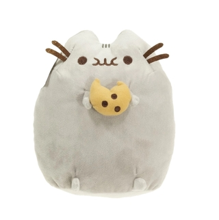 Pusheen + llavero de regalo