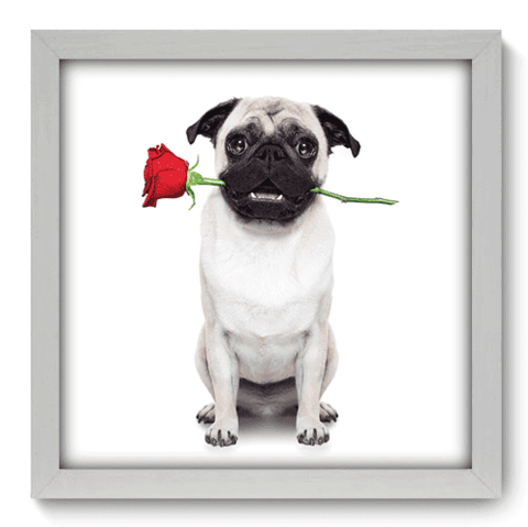 Quadro Decorativo - Dog - 029qdob