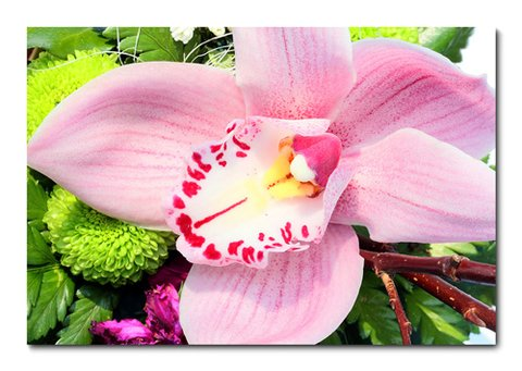 Placa Decorativa - Flor - 0321plmk