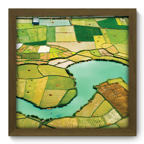 Quadro Decorativo - Campos de Arroz - 033qdpm