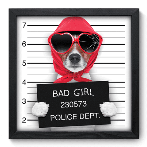 Quadro Decorativo - Bad Girl - 046qdsp