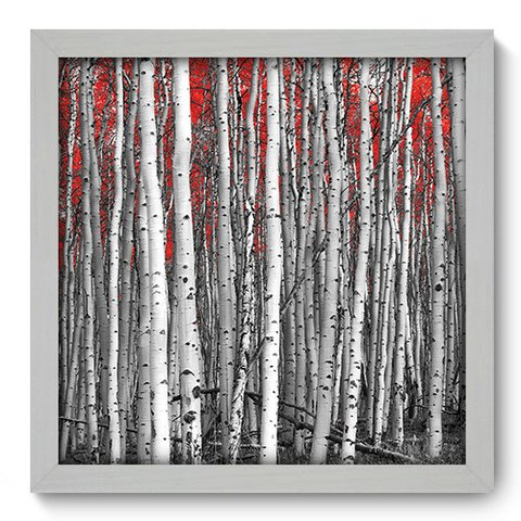 Quadro Decorativo - Floresta - 102qdpb