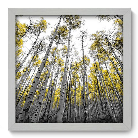 Quadro Decorativo - Floresta - 103qdpb