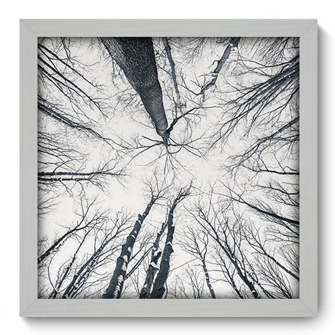 Quadro Decorativo - Floresta - 104qdpb