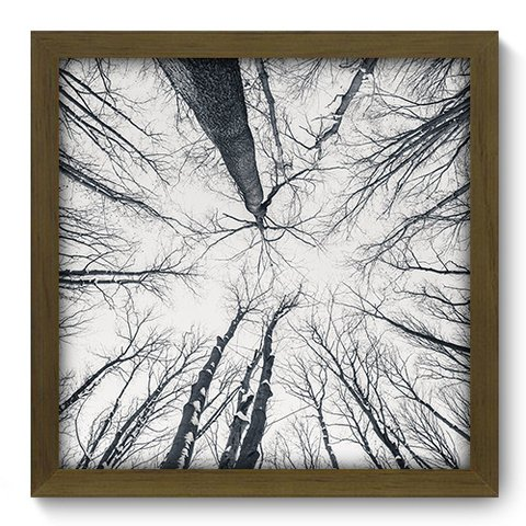 Quadro Decorativo - Floresta - 104qdpm