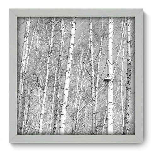 Quadro Decorativo - Floresta - 105qdpb