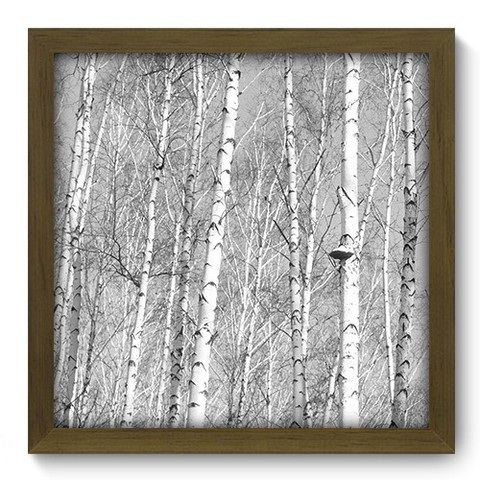 Quadro Decorativo - Floresta - 105qdpm