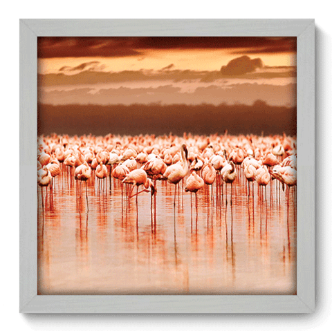 Quadro Decorativo - Flamingo - 128qdsb