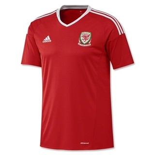 Camiseta Wales 2016 Local PRE-ORDEN