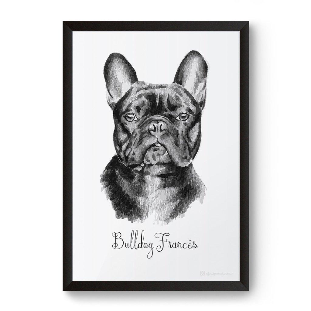 poster quadro bulldog francês pets