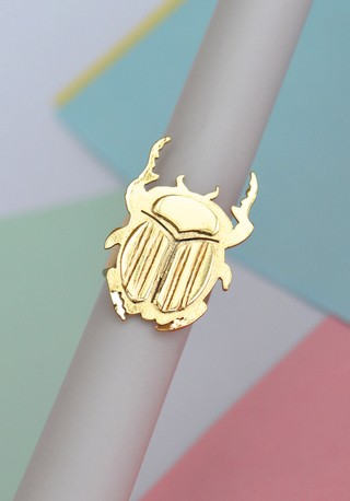 Ring Beetle-Donella - online store