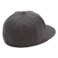 Vans SPLITZ FLEX FIT HAT (G2601) 15 - Nosepick