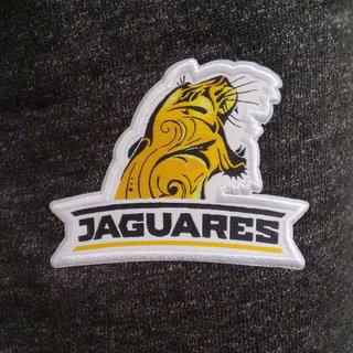 Pantalon largo Nike Jaguares 2018 - Heather en internet