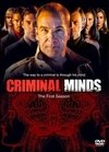 Criminal Minds 1ª Temporada
