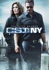 CSI New York 5ª Temporada