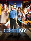 CSI New York 9ª Temporada
