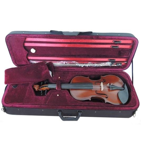 VIOLIN STRADELLA 4/4-TAPA PINO MACIZA FULLY CARVED