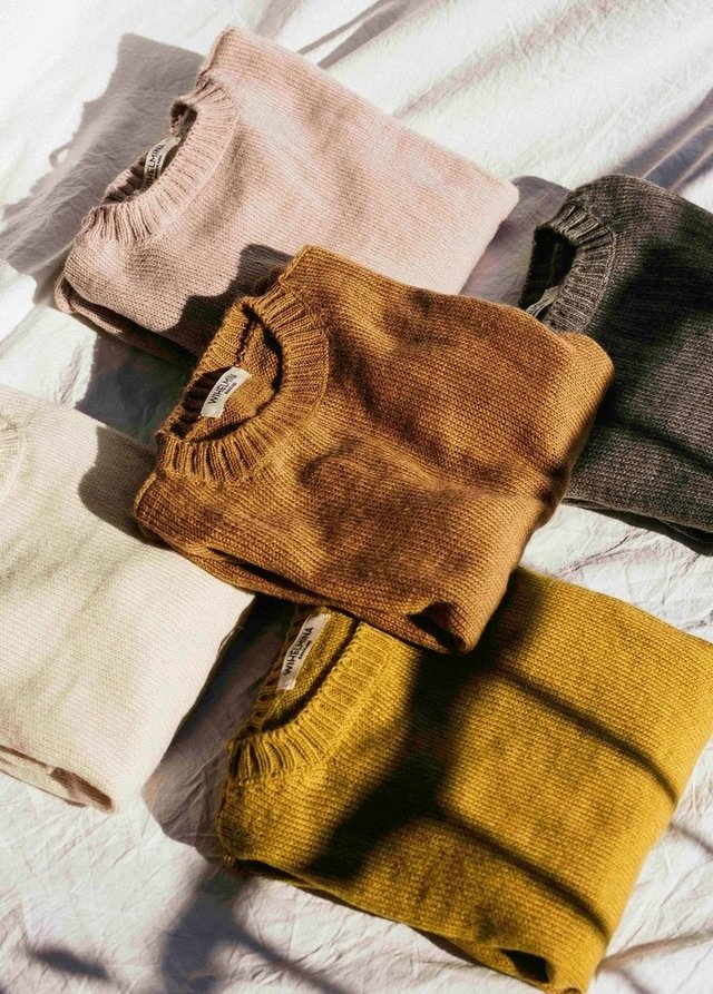 SWEATER TILO MUSTARD en internet