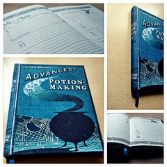 Agenda cosida - Harry Potter