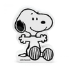 Cofre Snoopy