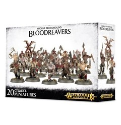 WARHAMMER AGE OF SIGMAR START COLLECTING! BLOODREAVERS