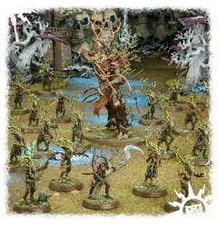 START COLLECTING! SYLVANETH - Warhammer Age of Sigmar - comprar online