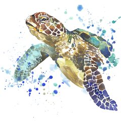 Tartaruga aquarela camiseta ecologica recicle use