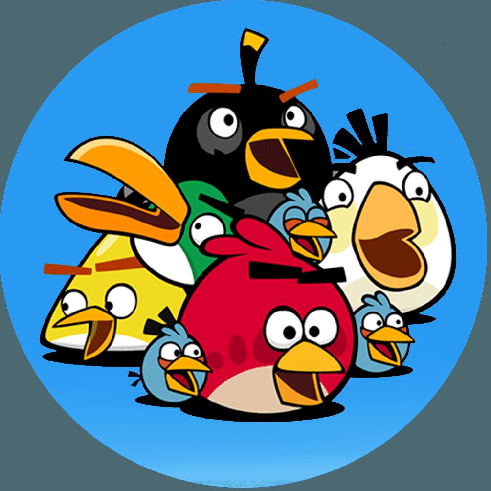 Camiseta Angry Birds 03 Infantil